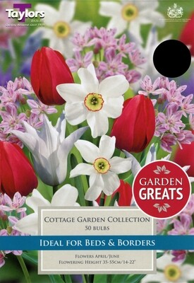 Cottage Garden Collection x50