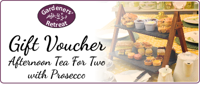Afternoon Tea for Two with 2 bottles of Prosecco Voucher