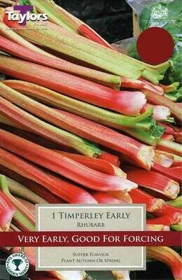 Rhubarb Timperley Early x1