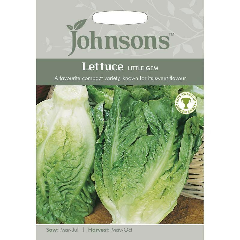 Lettuce Little Gem