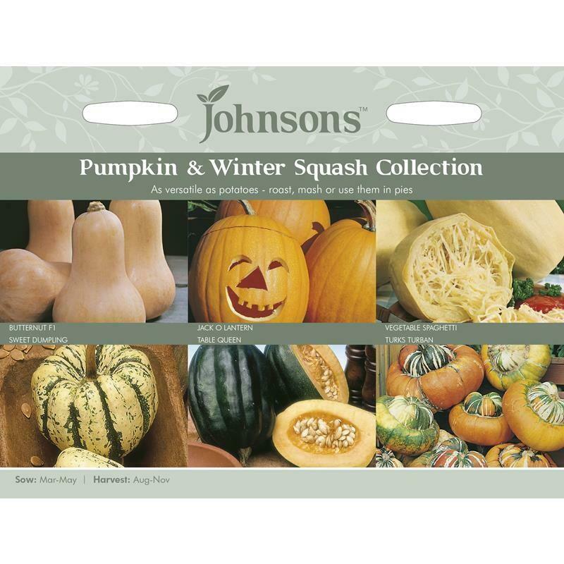 Pumpkin & Winter Squash Collection