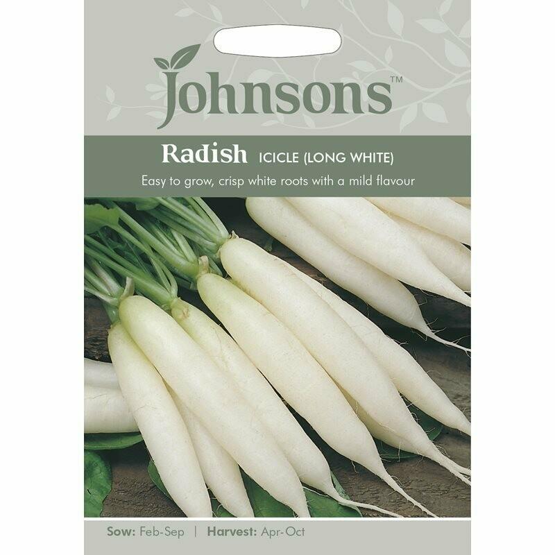 Radish Icicle (Long White)