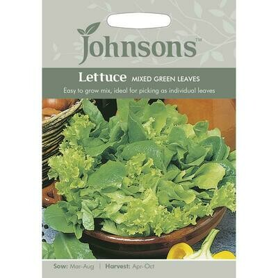 Lettuce Mixed Green Leaves