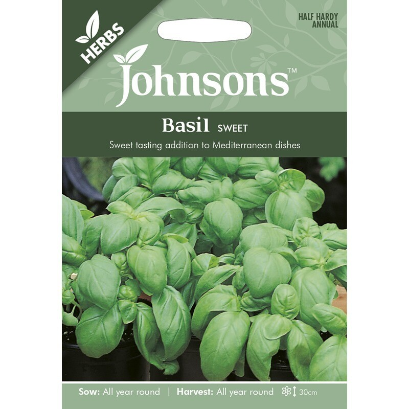 Herb - Basil Sweet