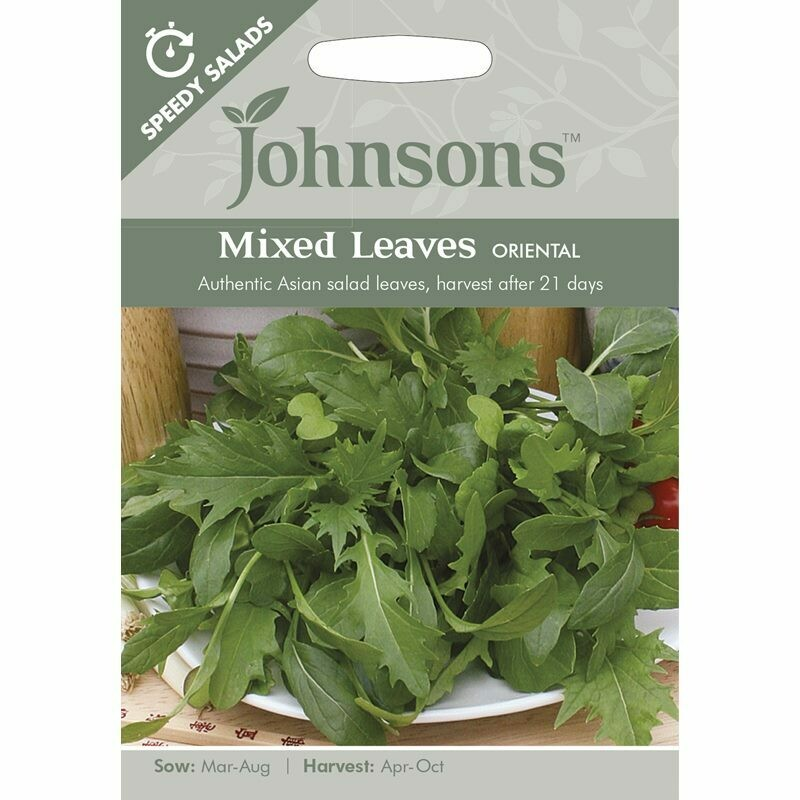 Mixed Leaves Oriental