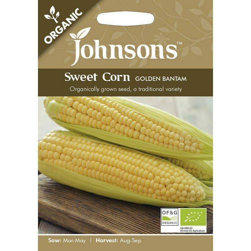 Sweet Corn Golden Bantam (org)