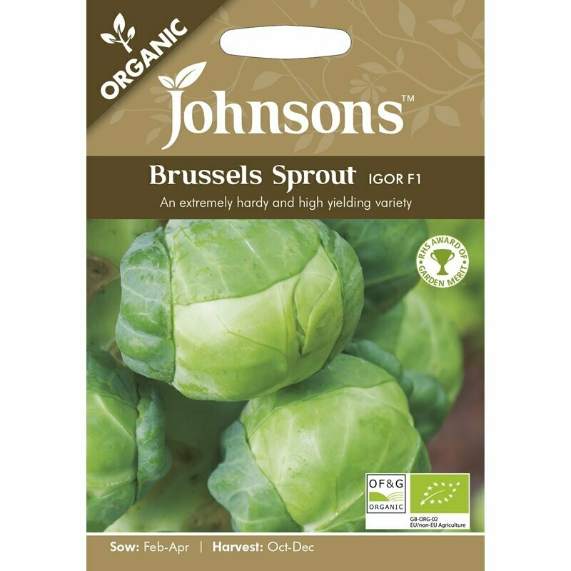 Brussels Sprout Igor F1 (org)