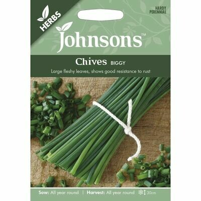 Herb - Chives Biggy