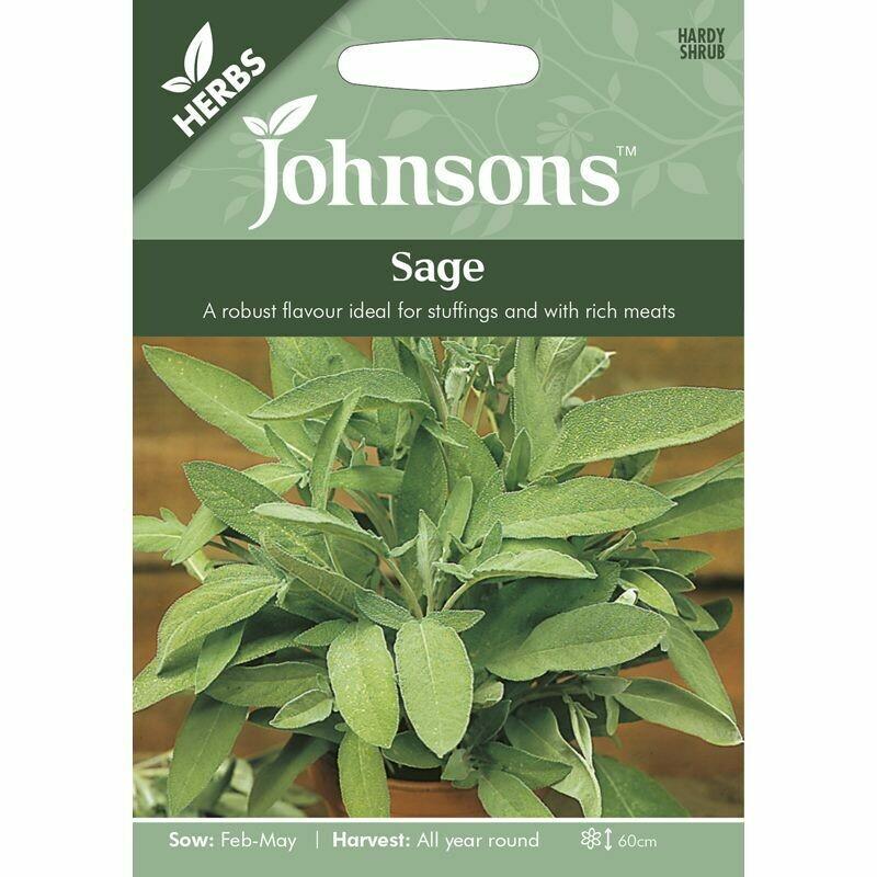 Herb - Sage