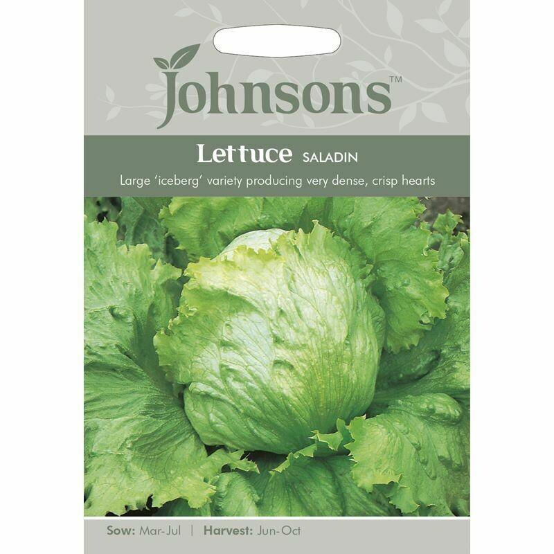 Lettuce Saladin