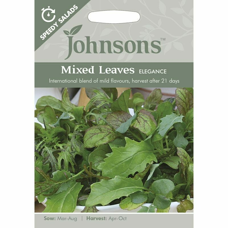 Mixed Leaves Elegance