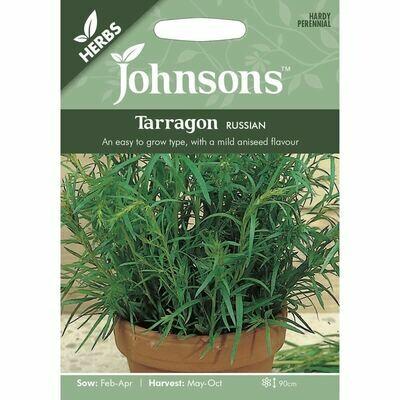 Herb - Tarragon Russian