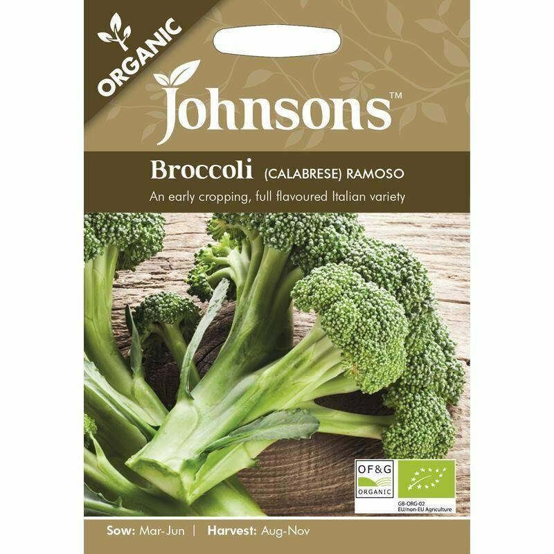 Broccoli (Calabrese) Ramoso (org)