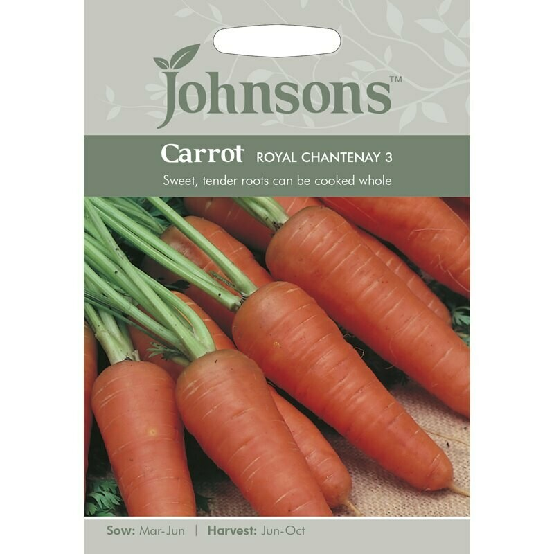 Carrot Royal Chantenay 3