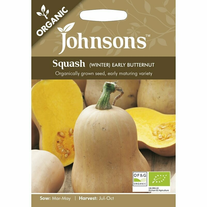 Squash (Winter) Early Butternut (org)