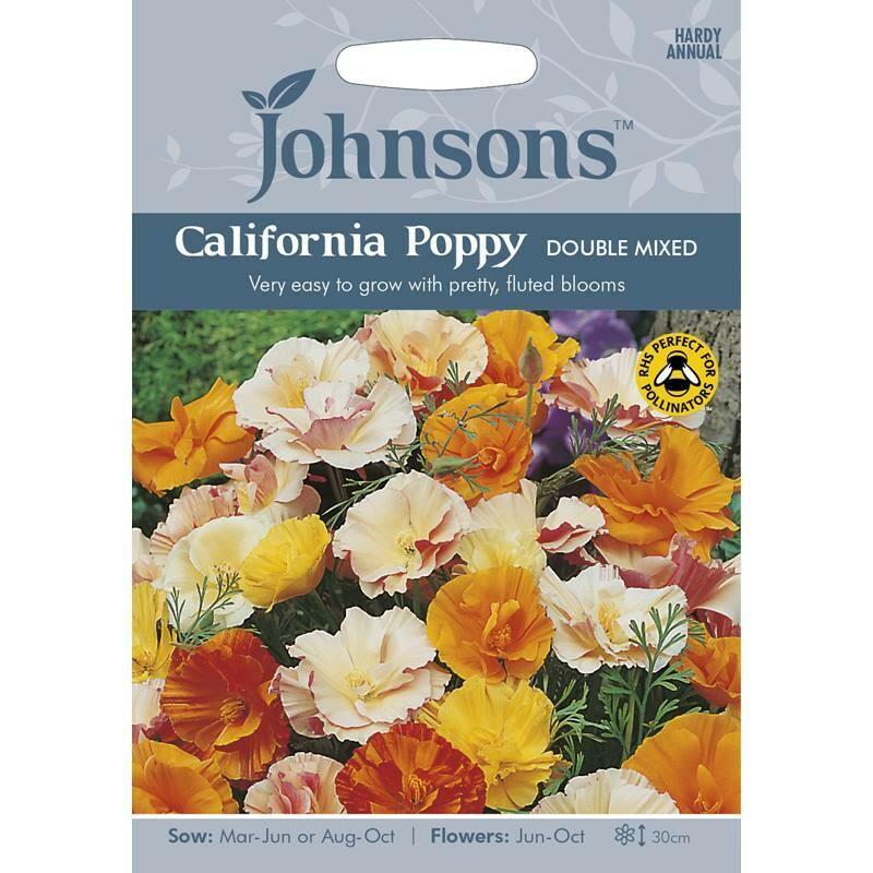 California Poppy Double Mixed
