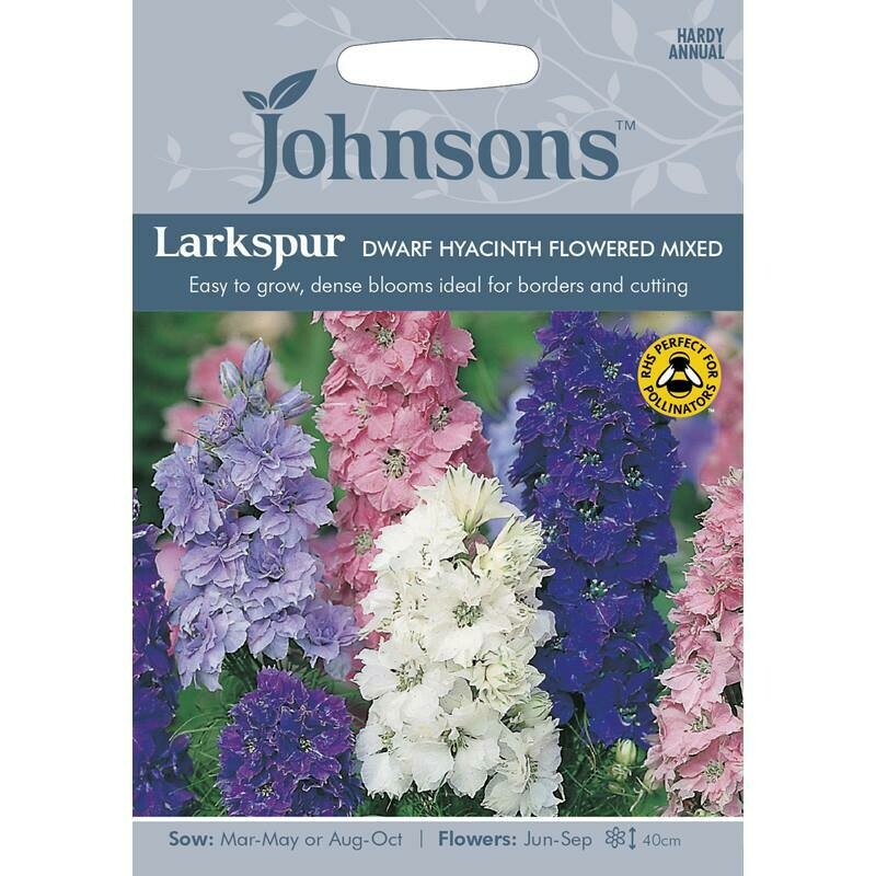 Larkspur Dwarf Hyacinth Flowered Mixed