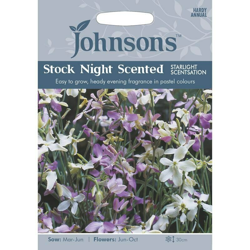 Stock Night Scented Starlight Scentsation