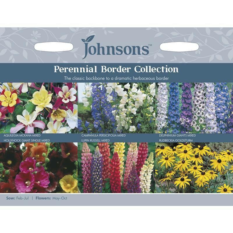 Perennial Border Collection