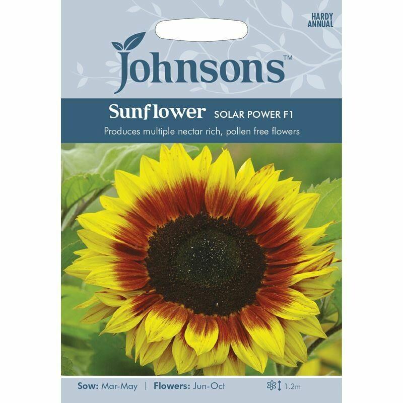 Sunflower Solar Power F1