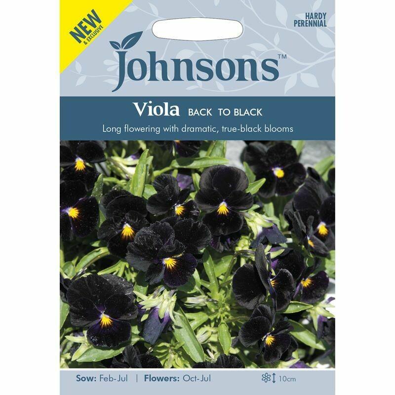 Viola Back To Black