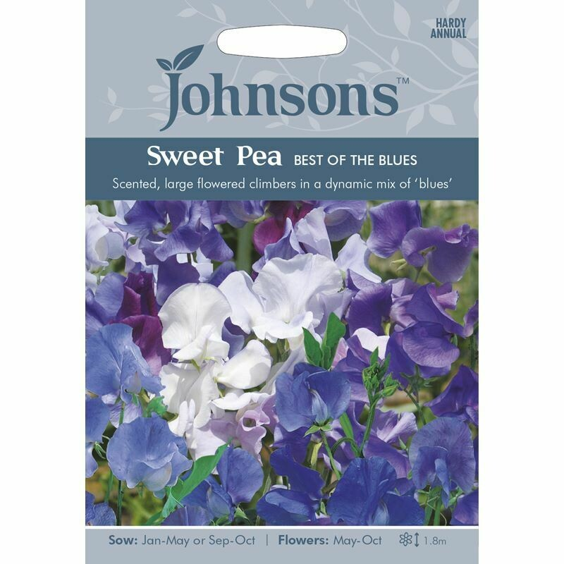 Sweet Pea Best Of The Blues
