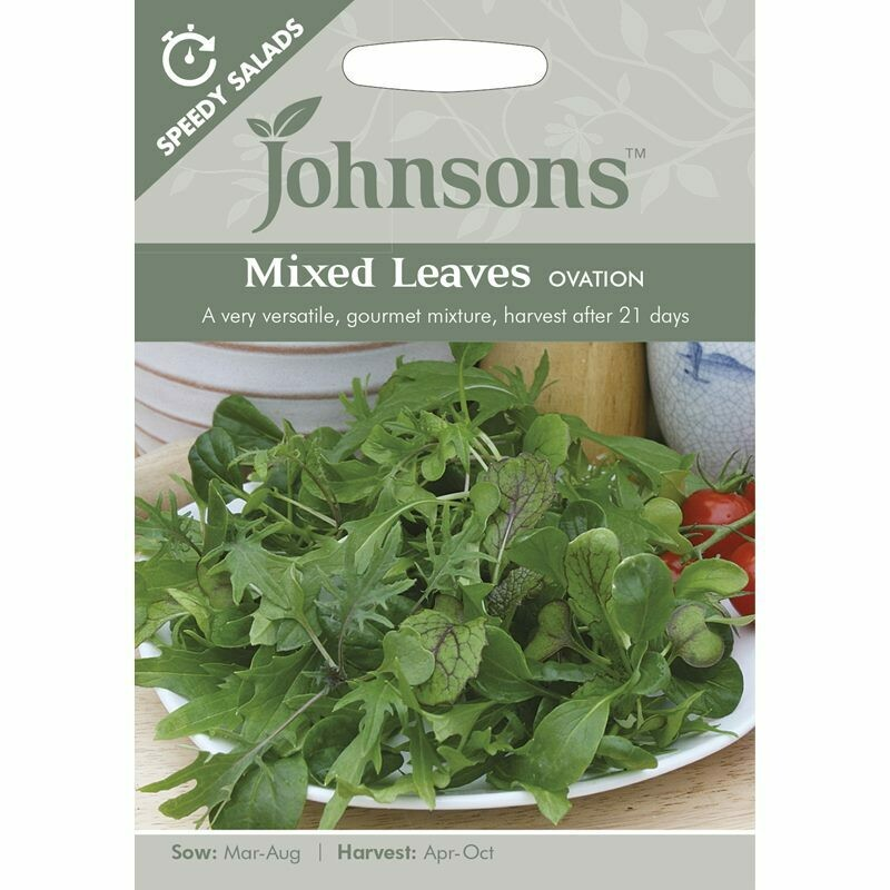 Mixed Leaves Ovation