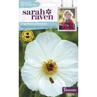 Sarah Raven Argemone Platycerus Prickly Poppy
