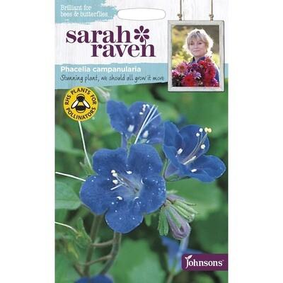 Sarah Raven Phacelia Campanularia