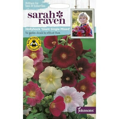 Sarah Raven Hollyhock Giant Single Mixed