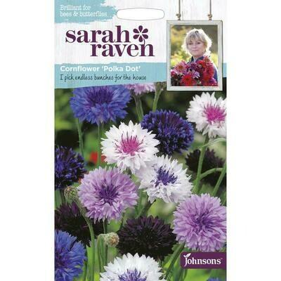 Sarah Raven Cornflower Polka Dot