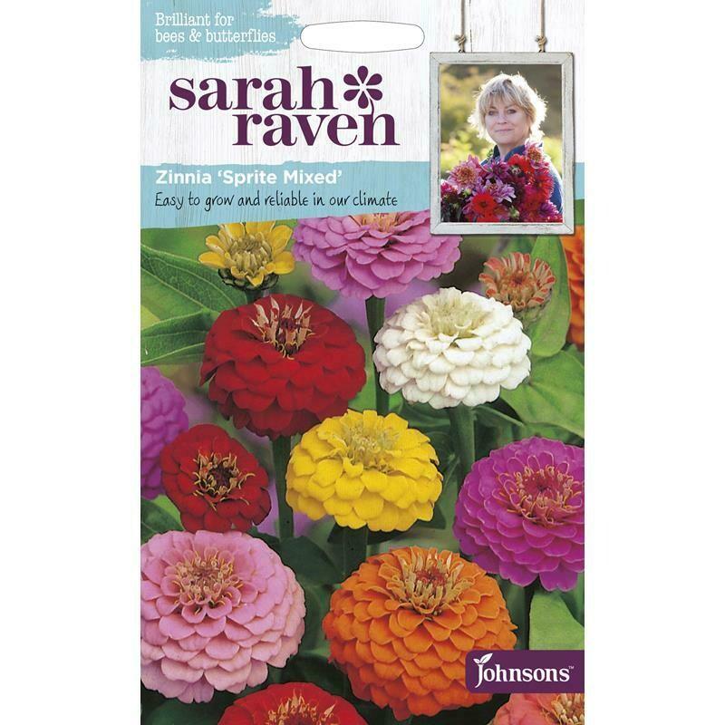Sarah Raven Zinnai Sprite Mixed