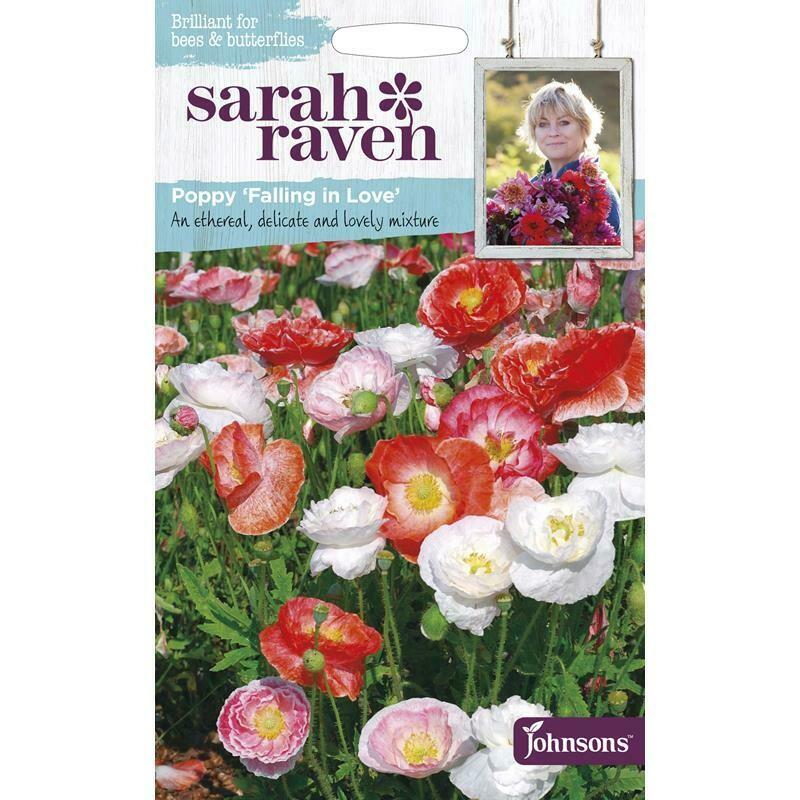 Sarah Raven Poppy Falling In Love