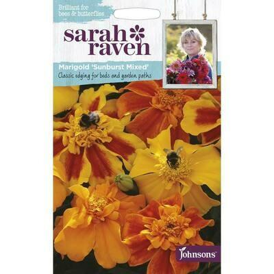 Sarah Raven Marigold Sunburst Mixed