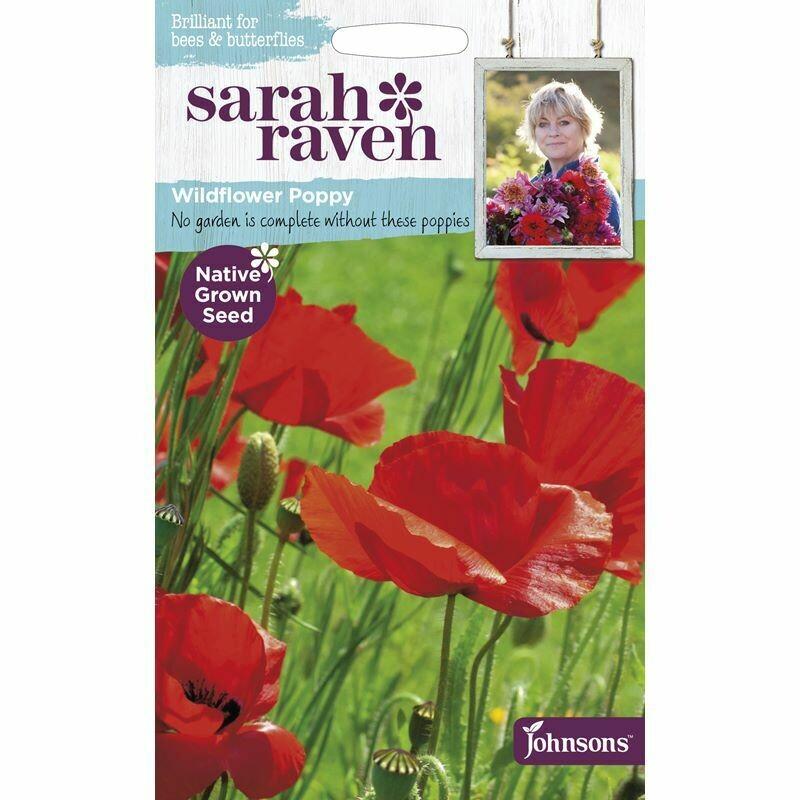 Sarah Raven Poppy