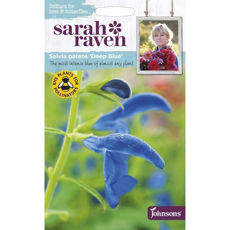 Sarah Raven Salvia Deep Blue