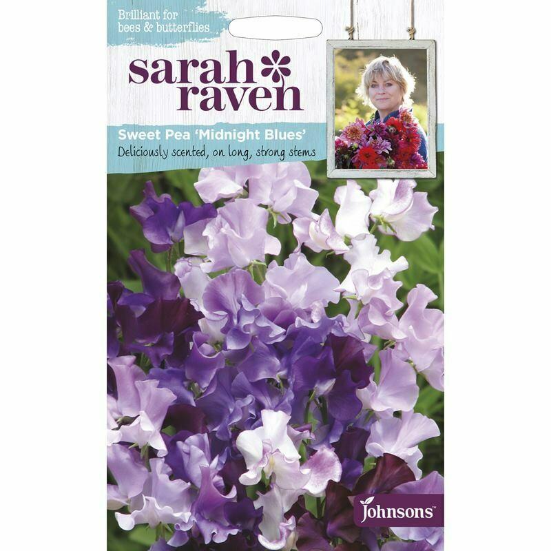 Sarah Raven Sweet Pea Midnight Blues