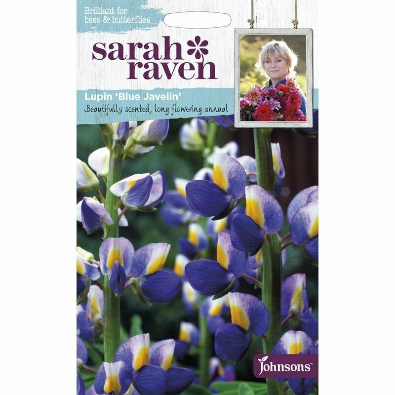 Sarah Raven Lupin Blue Javelin