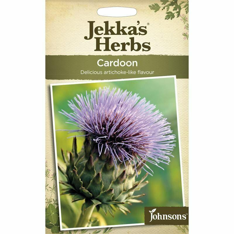 Jekka Herbs Cardoon