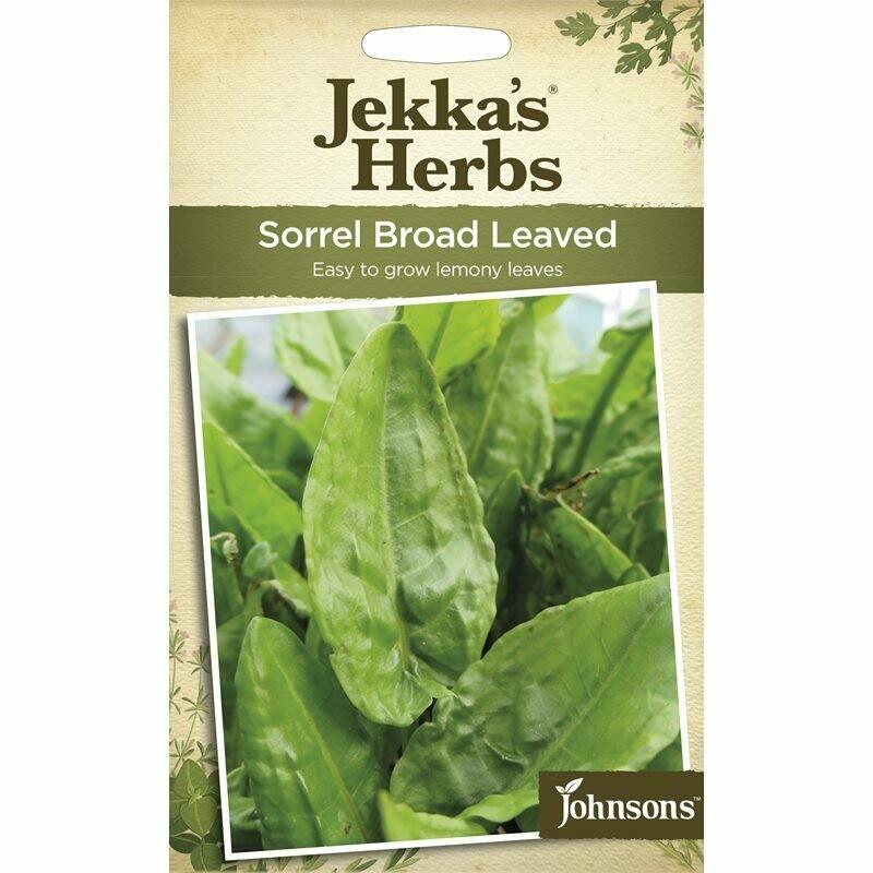 Jekka Herbs Sorrel Broad Leaved
