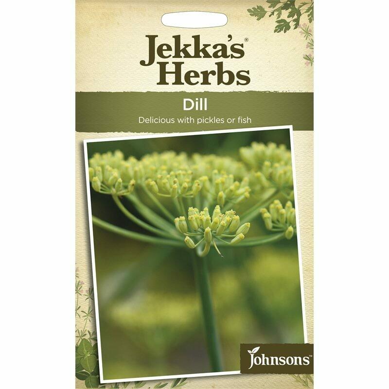 Jekka Herbs Dill