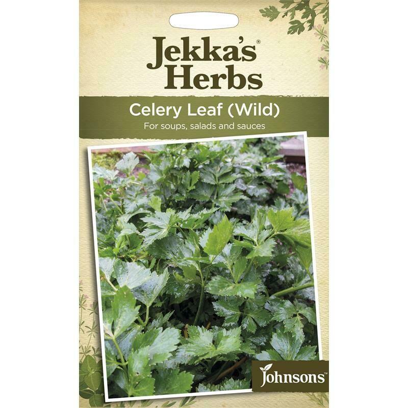 Jekka Herbs Celery Leaf Wild