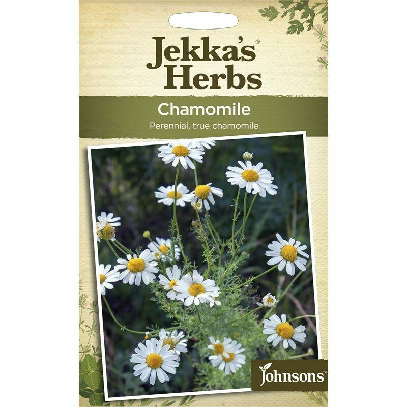 Jekka Herbs Chamomile