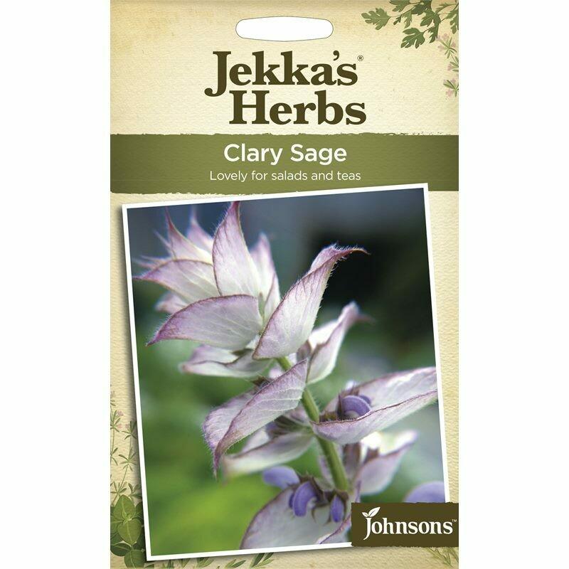 Jekka Herbs Clary Sage