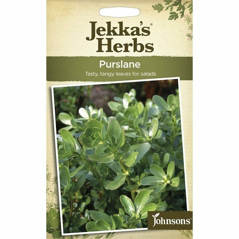 Jekka Herbs Purslane