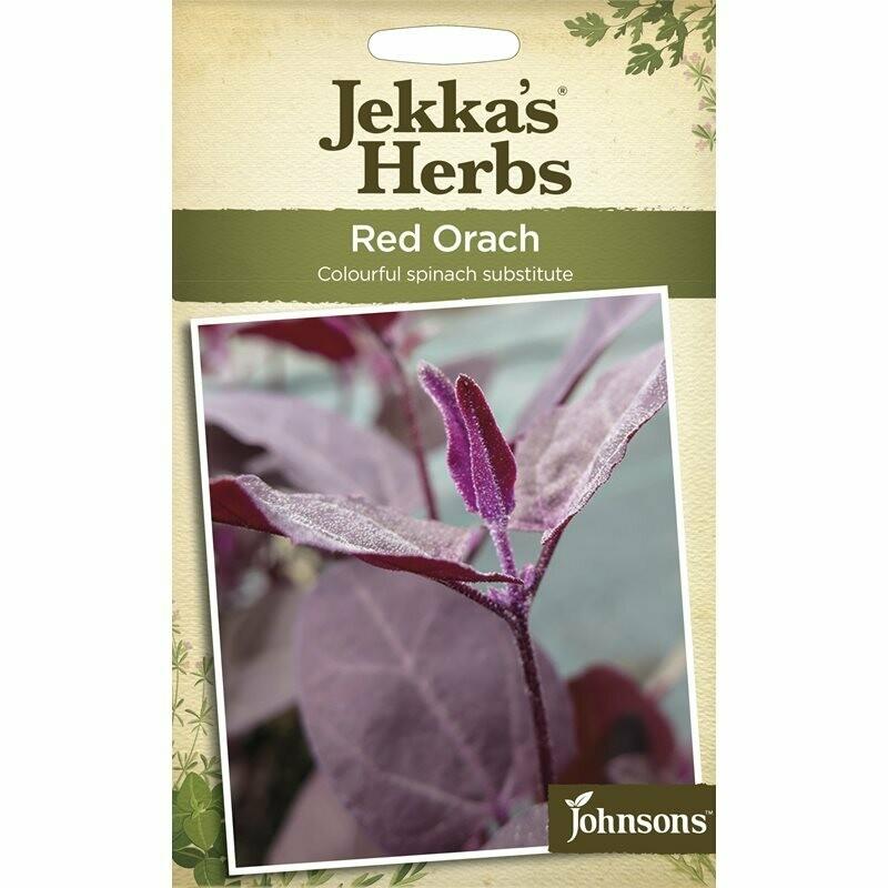 Jekka Herbs Red Orach
