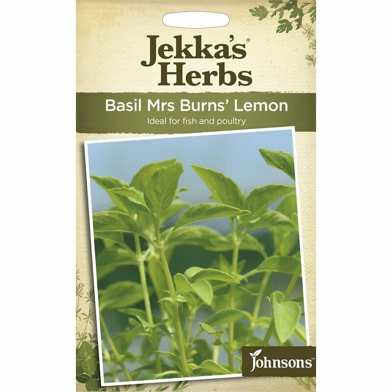 Jekka Herbs Basil Mr's Burns Lemon
