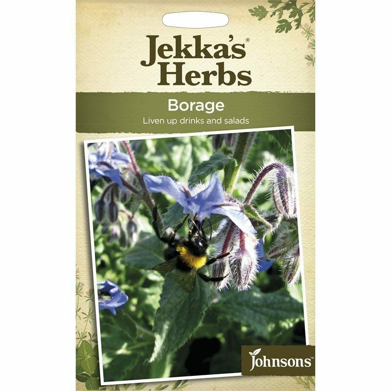 Jekka Herbs Borage