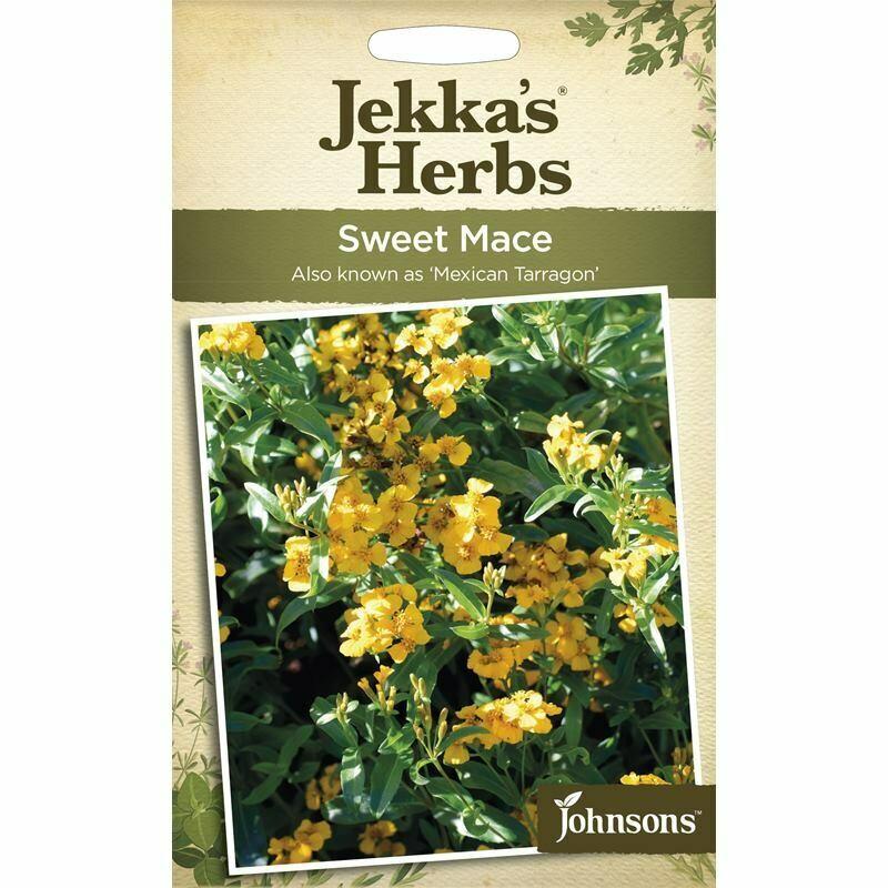 Jekka Herbs Sweet Mace