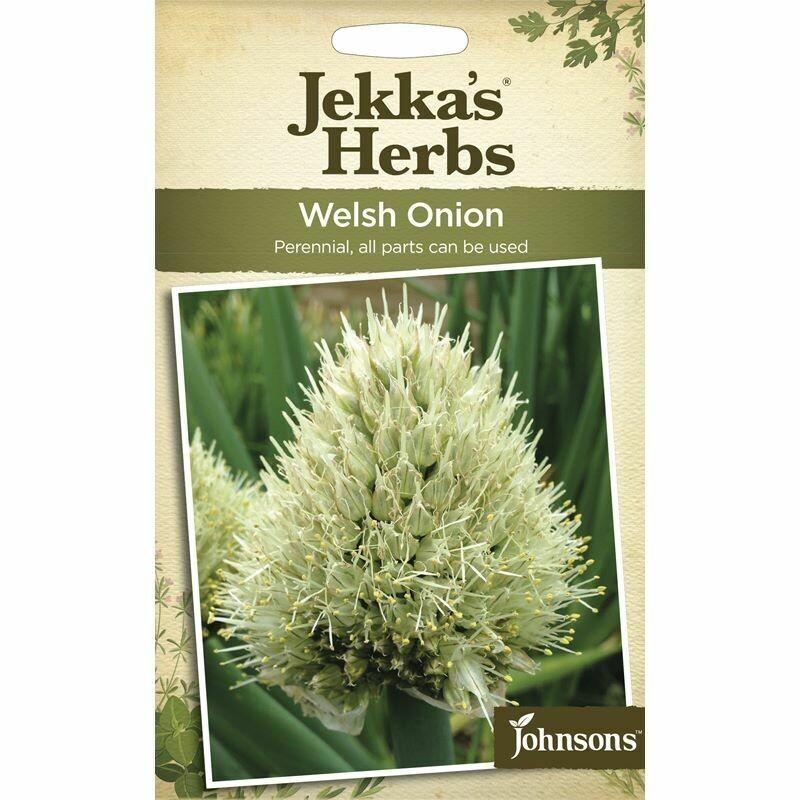 Jekka Herbs Welsh Onion